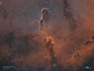 IC1396_Bi-Colour_28-8-2019