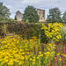 Helmsley Castle from Helmsley Walled Garden
