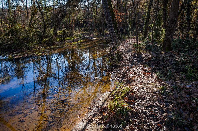 Camino inundado en la Roureda de Tordera