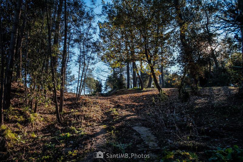 Sendero a la ermita de Sant Pere de Tordera