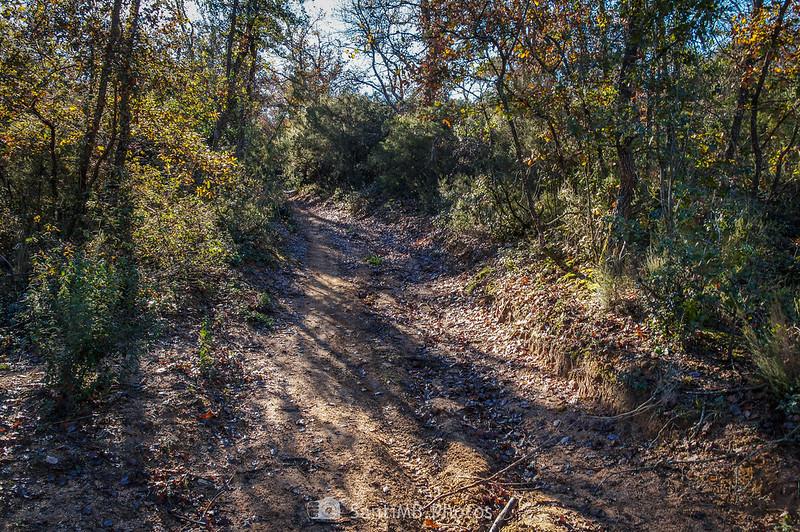 Camino de la Roureda de Tordera a Can Raba