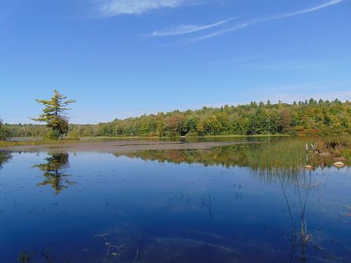 canada québec laurentides larivièredunord park parcnatureldulacjérôme lake lac lacjérôme
