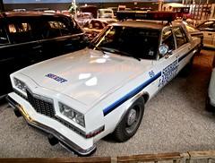 1981 DODGE Diplomat Sedan