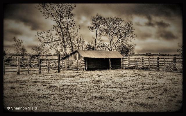 Waller County Texas Barn
