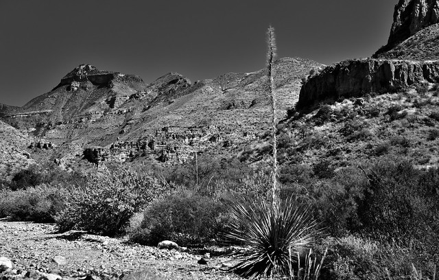 A Desert Landscape and View Across a Mountainside While Hiking Along the Blue Creek Trail (Big Bend National Park)