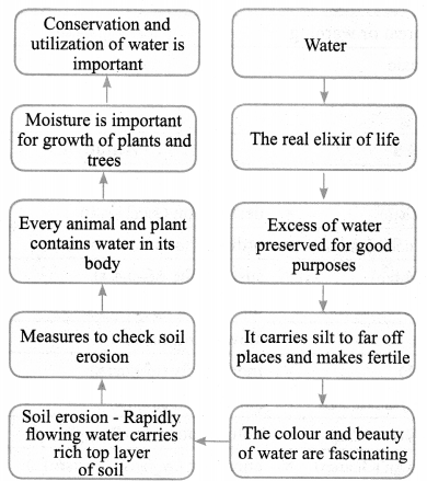 Tamilnadu Board Class 9 English Solutions Prose Chapter 5 Water - The Elixir of Life - 1