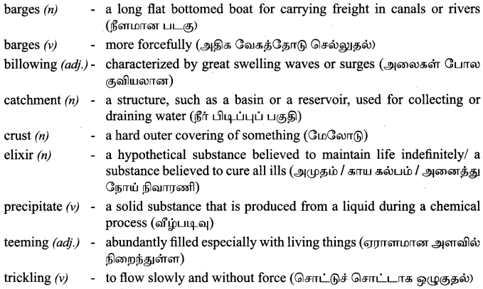 Tamilnadu Board Class 9 English Solutions Prose Chapter 5 Water - The Elixir of Life - 2