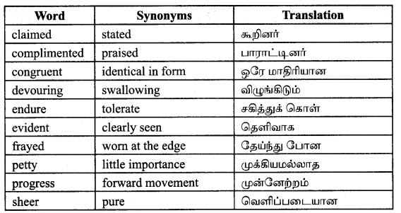 Tamilnadu Board Class 9 English Solutions Prose Chapter 6 From Zero to Infinity - 4