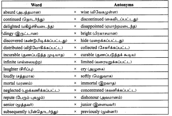 Tamilnadu Board Class 9 English Solutions Prose Chapter 6 From Zero to Infinity - 5