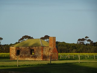 Poonindie. An old stone cottage at Poonindie Aboriginal Mission with a paddock of canola behind it.