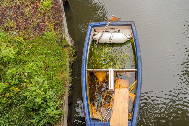 Largely sunken boat with duckweed and mess
