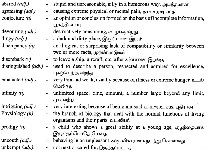 Tamilnadu Board Class 9 English Solutions Prose Chapter 6 From Zero to Infinity - 3