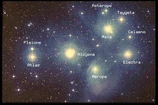 Stars in the Pleiades