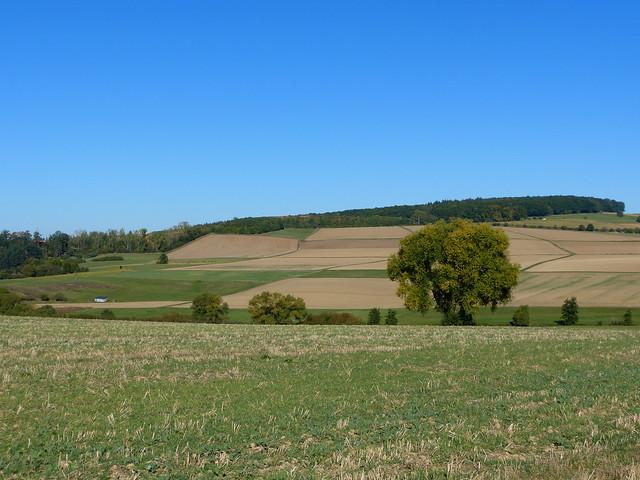 2019 Germany // Wanderung bei Mensfelden // Mensfelder Kopf
