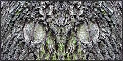 der hypnotiseur - the hypnotist