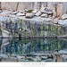 Shoreline Bench, Reflections
