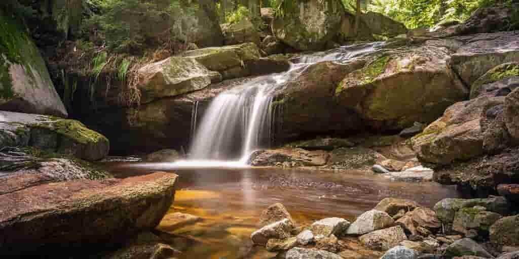 Éliminer les polluants des cours d'eau avec une bactérie