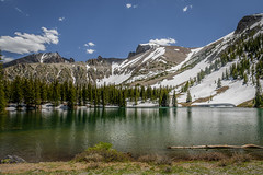 Spring in Great Basin National Park