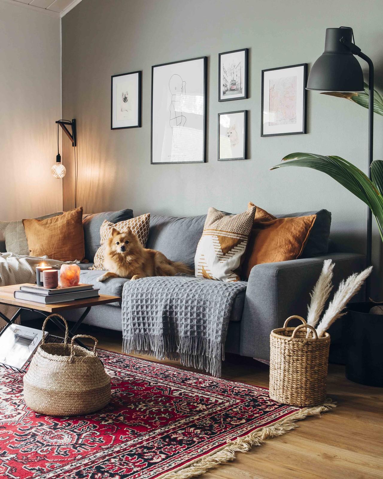 Harmaa sohva harmaata seinää vasten. Sohvalla istuu koira, lattialla on punainen persilainen matto ja riisikori.