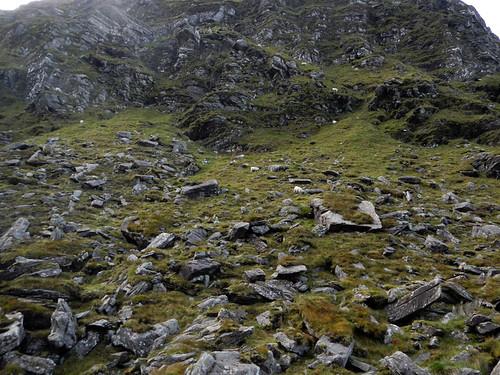 Drive through the green rocky Ballighbeama Gap to Killarney National Park, Ireland