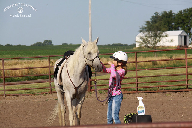 Horse Lessons (more pics)