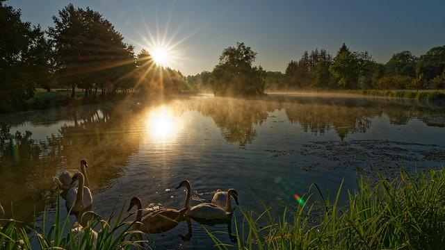Meuse en fin d'été - Sept 19 - 33