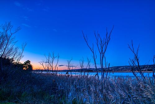 dawn launceston tasmania tamar river light sunrise