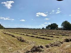 Ready to bale #haywork #farmlife #familyfarm #goodfarmstuff
