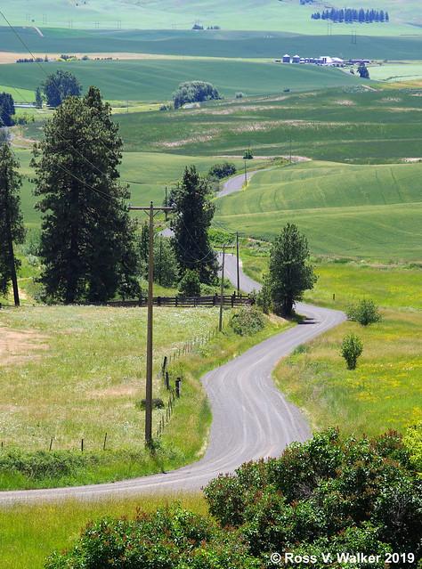 Latah County Road