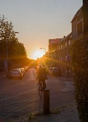 Bike for the sun