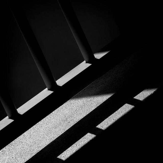 Creeping-Shadows-VIII_84A8829-1