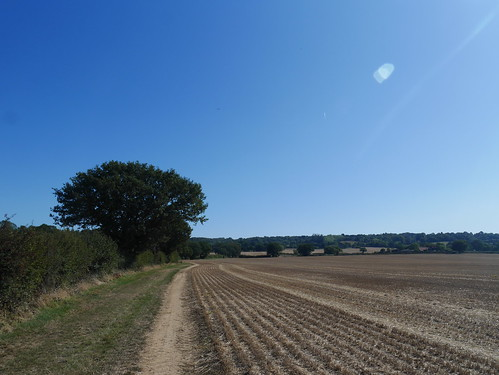 Countryside leading to Epping Forest