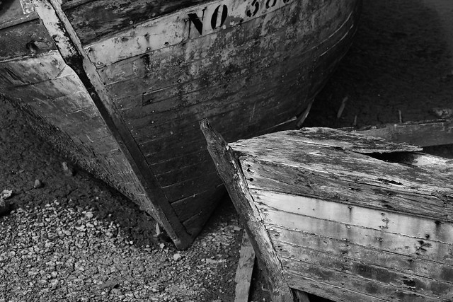 Wounded boats 05