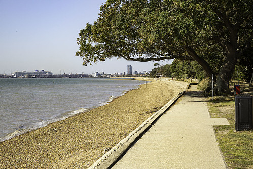 hampshire netley southampton beach eastleigh outside tree southamptonwater outdoors england 2470l