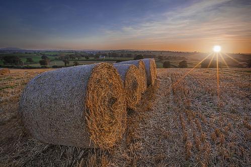 bales sunset harvest straw stubble farm cereal crop arable tillage rotation wheat grain alanhopps canon 5dmkiv northernireland ulster poyntzpass sunburst evening sunstar 1635mmii wideangle landscape cut summer autumn season agriculture field dusk