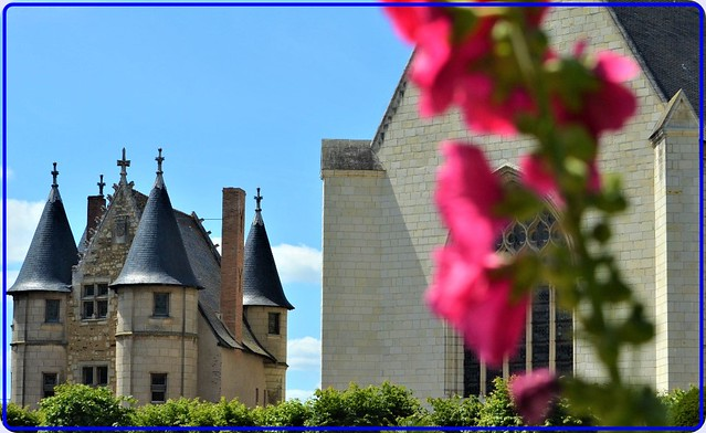 Flowers & history: In the garden of the Angers castle, France -1