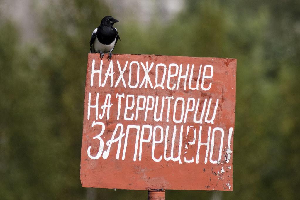 Добро пожаловать или вход запрещён!