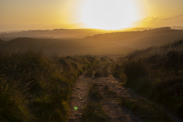 take the country road into the welcoming fine art sunset. Sands of Forvie Nature Reserve, Aberdeenshire, Scotland.