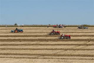 Ploughing Match_21-09-19_5312