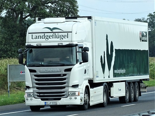 Scania R450 topline from Land geflügel Germany.