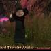 Wizard Traveler Avatar