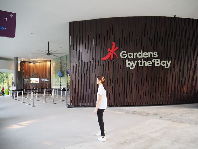 P9165199 Gardens by the Bay ガーデンズ・バイ・ザ・ベイ singapore シンガポール ひめごと