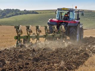 Massey Feguson Ploughing_21-09-19_5290