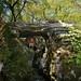 Moi sous une des nombreuses arches du bois de Païolive