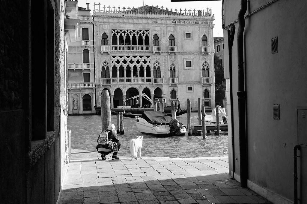 Uno sguardo alla Cà d'Oro Venezia