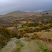 Hare Tor West Devon.30