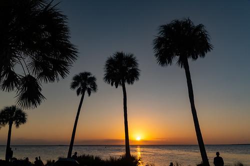 sunset sunsetbeach tapronsprings fl florida floridasunset beach palmtrees palmtree horizon orange orangesky orangeglow gulfofmexico gulf colorfulskies colorful colorfulsky colorfulskys pentaxk50 pentax pentaxart sky skyporn reflections