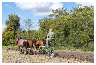 Ploughing in the year 2019 _ 4 | by leo.roos