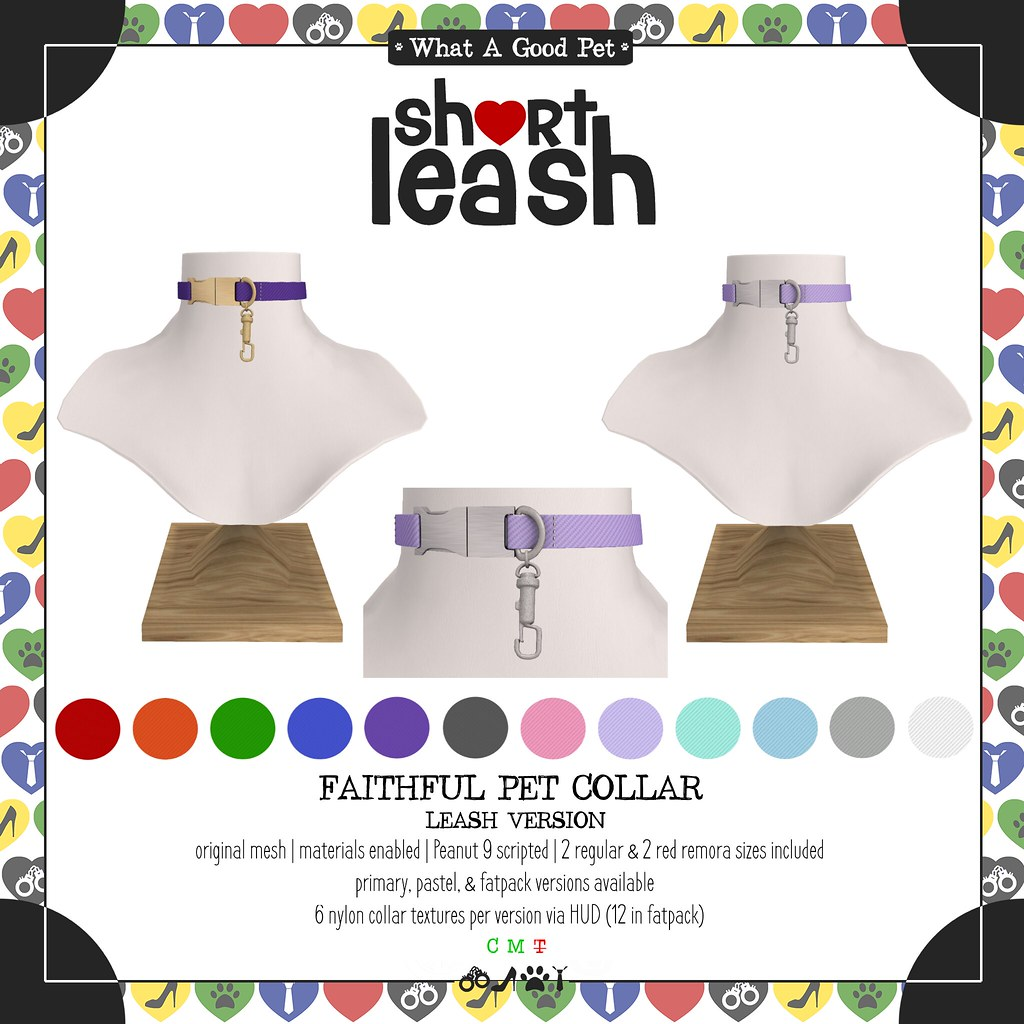.:Short Leash:. Faithful Pet Leash Collar