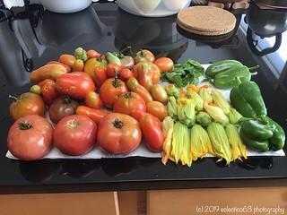 late summer harvests...